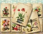 NATURE - Printable Download Digital Collage Sheet ChikUna Art images Vintage Ephemera Paper Craft, Scrapbook Gift tags  ACEO