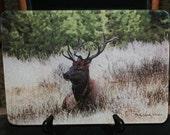 Glass Cutting Board Large - Elk Sitting - 12 in x 15 in