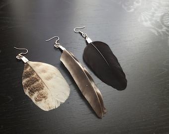 Single Feather Earrings - Blackbird, Hen, Turkey