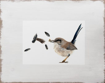Bird Print -- Feather Illustration // Woodland Animal Print // Limited Edition Art