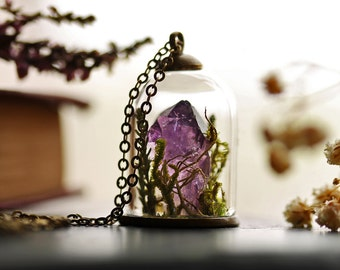 Terrarium necklace , amethyst crystal, February birthstone , moss terrarium , bell jar pendant , real plant jewellery, gift from Ireland #E3