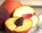 Red Haven Peaches - Original Fine Art Photograph (garden, farmer, farm to table, fruit, baking, farmers market)