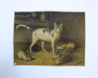 Antique Cat and Kittens Poster - Animal Lithograph Print c.1900 - Antique Cat Art