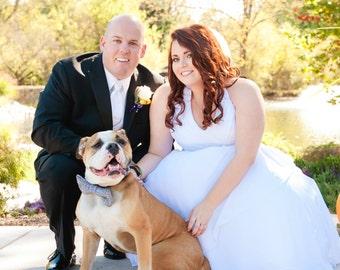 Plaid Dog Bow Tie In Black Classic Wedding Accessory