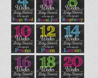 Bi Weekly Pregnancy Digital Chalkboard Week Signs - Photo Prop - Digital - Weeks 4-40 - Baby Announcement - DIY Print  - {18PCS}