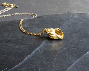 Shell necklace - gold plated