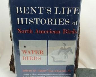 Bent's Waterbirds, Bent's Life Histories, North American Birds, Bird Books, Bird References, Bird Lover Gift Under 40, Vintage Nature Book