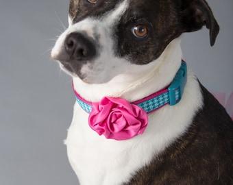 Pet Supplies-Pet Clothing-Accessories & Shoes Pet Accessories-Pet parade-Wedding Dog Collar-Wedding Dog flower-Dog collar flower-Dog Costume