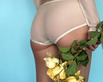 Champagne Rose Mesh Panty