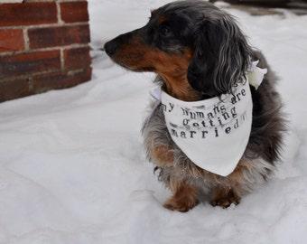Wedding dog bandana dog wedding pet wedding dog collar dog wedding bandana pet bandana pet photo prop rustic wedding dog of honor