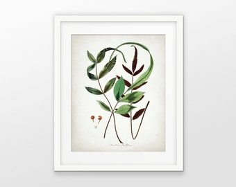 Green Plant Art Print - Green Wall Decor - Plant Art - Botanical Print - Green Leaf - Green Leaves - Single Print #1612 - INSTANT DOWNLOAD