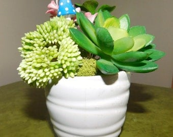 Faux Succulent Arrangement, Tiny Plants, Small Faux Plants, Succulent Flowers, Succulents and Mushroom, Succulents in Small Round White Vase