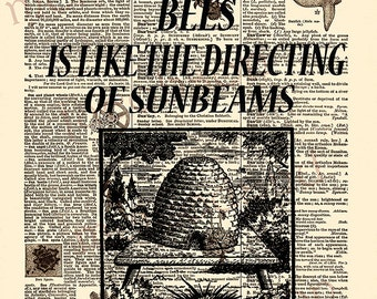 bees beehive 8.5 x 11 instant download vintage dictionary print art sunbeams Thoreau literary quotation wall art beekeeper gift home decor