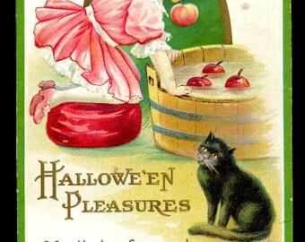 1918 Girl with Apples & Black Cat Halloween Postcard