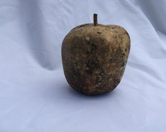 Dried Apple Gourd/ Gourd Uncleaned, Apple /Craft Gourd/ A5