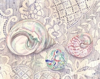 Shells with Lace Print