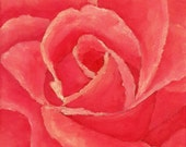 Pink Rose Painting, Rose Flower Still Life Painting