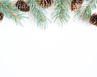 Styled Pine Branches and Pine Cones on White Desk | Styled Stock Photography | Holiday Desktop | Product Background | Digital Image CS299
