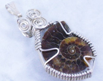 Ammonite Fossil Wire Wrapped in Sterling Silver Pendant Necklace