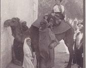 Antique Photo of a Woman on a Camel - Vintage Travel Grand Tour - Tourist Photograph - Egypt Middle East Exotic Vacation Souvenir