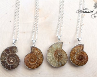 Ammonite Fossil Necklace, Fossil Necklace, Beach Jewelry, Fossil Jewelry, Beach Jewelry, Shell Necklace, Silver Ammonite Fossil Necklace