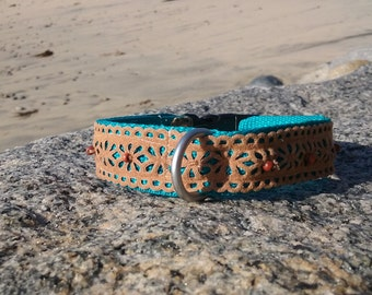Brown and Turquoise Faux Suede Dog Collar