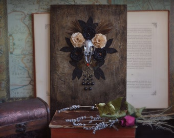 Skull Art: mixed media artwork of a real rabbit skull with flowers and feathers. Day of the Dead, Halloween. Dark macabre taxidermy art.