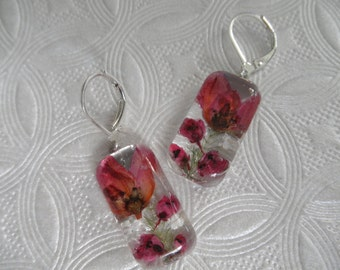 Pink Boronia,Heather Pressed Flower Glass Rectangle Leverback Earrings-Symbolizes Solitude,Admiration-Gifts Under 25