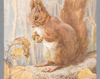 Red Squirrel Illustration By Barbara Briggs