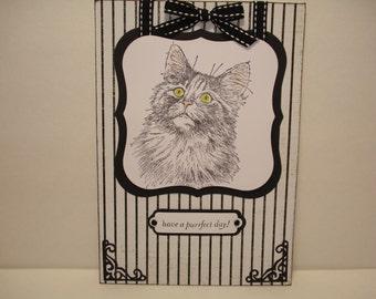 hand-made card /cat card