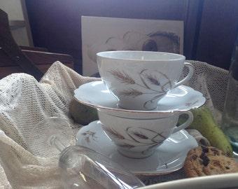 Vintage bavarian porcelain tea cup and saucer