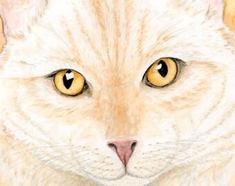 Orange Cat Art, Orange Cat Print, Orange Cat Watercolor Cat painting Orange Tabby Cat Close up Orange Ginger Cat Painting, Ginger Cat print