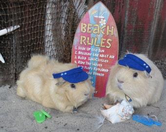 Sun Visor Hat for small pet Hedgehog Vogue Guinea Pig Mini pigs Ferrets small animals Cat Dog