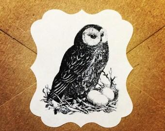 Envelope Seals / Stickers - Owl Nest #163