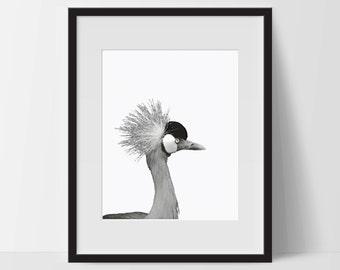 Art Print, Dramatic Bird Art, Printable, Digital Print, Bird Print, Wall Art, 8x10, Decorations, Bird, Black and White, Art