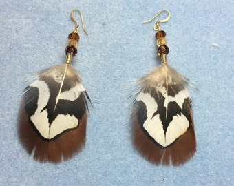 Brown Reeves pheasant feather earrings adorned with Czech glass beads.