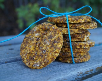 Organic All Natural Pumpkin & Carrot Vegan Treats