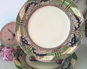 "Myott 'England's Countryside' 10"" Dinner Plates, only 1 left"