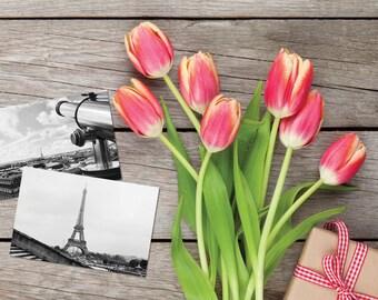 """Eiffel Tower Postcards, fine art Paris Photography, A set of 2 6 x 4"""" black and white travel postcards, Iconic Paris prints"""
