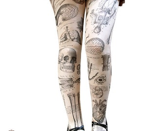 Anatomy ~ tights