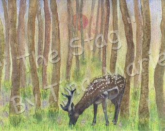THE STAG - Giclee Print
