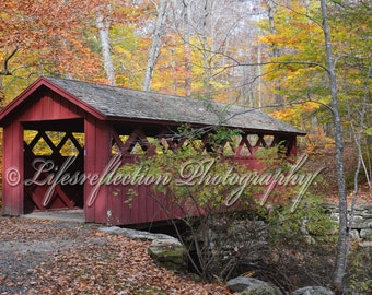 Passage, Bridge Photography, Wall Decor, Fine Art, Nature Photography