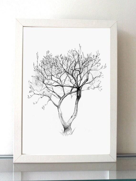 Magnolia Tree Pencil drawing Tree art Giclee print A4 or
