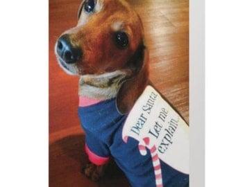 Holiday Dog Card Mini Dachshund- Season to be Naughty- Animal Rescue Greeting Card - 5 x 7 Scrappy Dizzle Designz