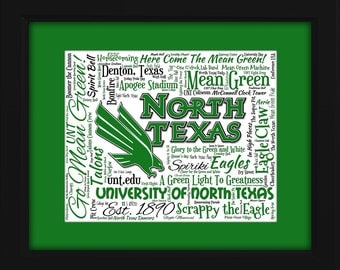 University of North Texas (UNT) 16x20 Art Piece - Beautifully matted and framed behind glass