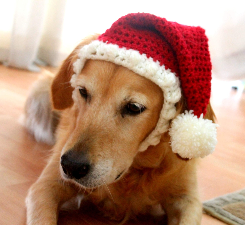 Santa Hat For Dogs Dog Santa Hat Holiday Dog Hat By