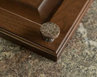 Round Petoskey Stone Knob on silver base