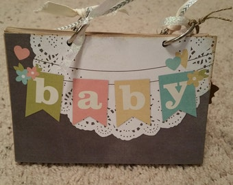 Baby Brag Book (23 pages)