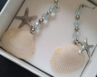 Dangling Sea Shell Earrings