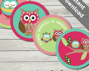 Owl Baby Shower Cake Toppers/ Party Circles. Printable. Instant Download.